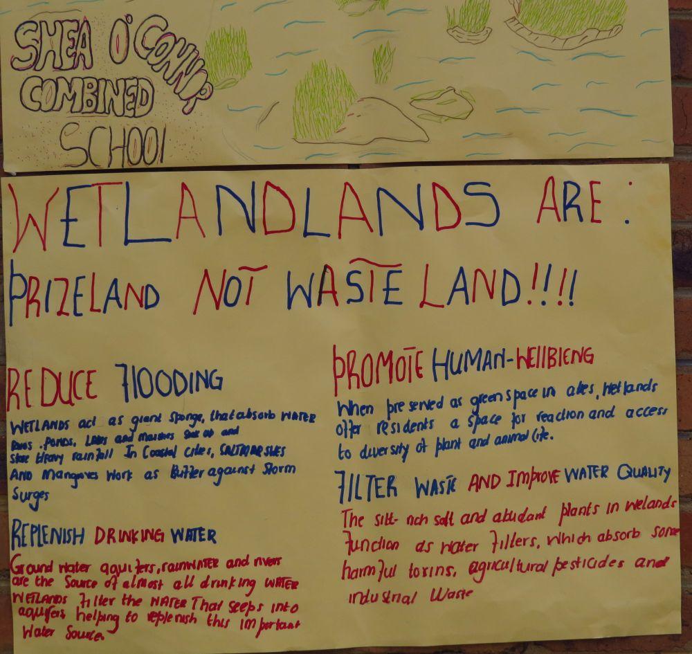 a soc wetland poster